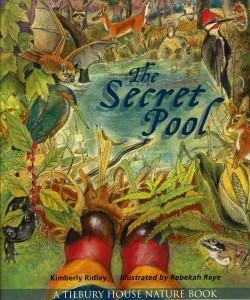 secret_pool_cover-250x300
